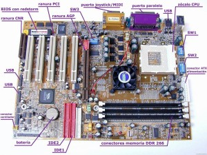 Las partes internas de una computadora – Informática 1 0