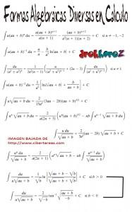 Formas Algebraicas Diversas en Calculo 0