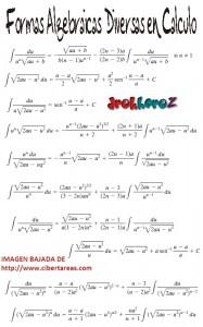 Formas Algebraicas Diversas en Calculo 1