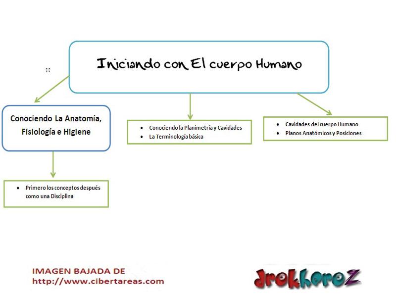 Iniciando con el Cuerpo Humano-Ciencias de la Salud-Mapa Conceptual ...