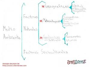 Medio Ambiente-Ciencias de la Salud-Mapa Llave 0