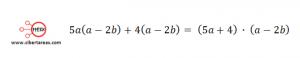 Factorización Factor común por agrupación de términos – Matemáticas 1 11