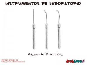 Agujas de Diseccion-Instrumentos de Laboratorio
