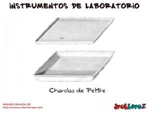 Charolas de Peltre-Instrumentos de Laboratorio
