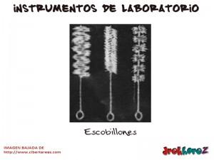 Escobillones-Instrumentos de Laboratorio