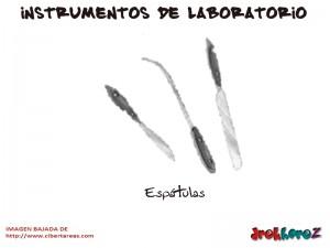 Espatulas-Instrumentos de Laboratorio