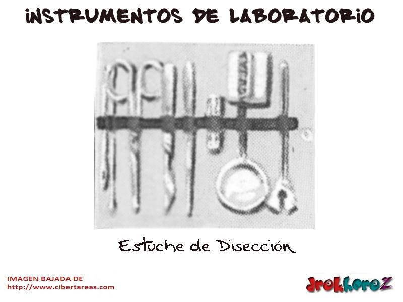 Estuche de Disección – Instrumentos de Laboratorio | CiberTareas
