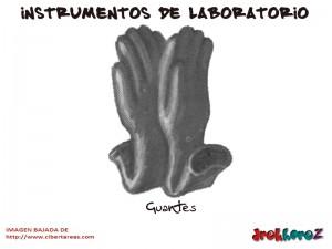 Guantes-Instrumentos de Laboratorio