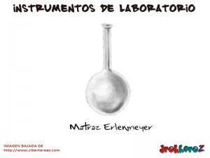 Matraz Erlenmeyer-Instrumentos de Laboratorio