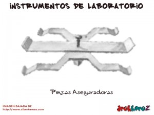 Pinzas Aseguradoras-Instrumentos de Laboratorio