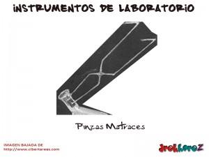 Pinzas Matraces-Instrumentos de Laboratorio