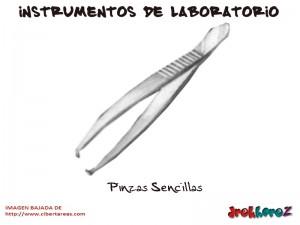 Pinzas Sencillas-Instrumentos de Laboratorio