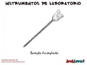 Sonda Acanalada-Instrumentos de Laboratorio