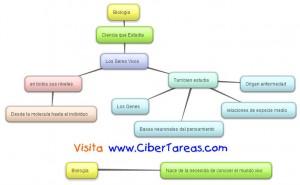 Biologia y Sus Principios-Mapa Conceptual