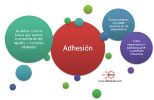 mapa conceptual adhesion