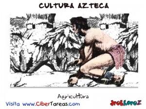 Agricultura-Cultura Azteca
