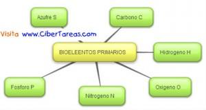 Bioelementos Primarios-Mapa Mental