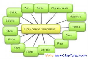 Bioelementos Secundarios-Mapa Mental