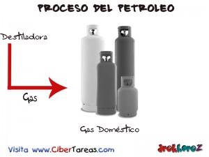 Gas Domestico-Proceso del Petroleo