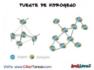 Puente de Hidrogeno-Biologia 1