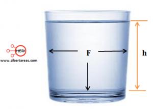 presion hidrostatica 1