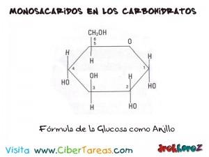 Formula de la Glucosa-Monosacaridos de los Carbohidratos-Biologia 1
