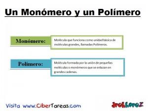 Monomero y Polimero-Biologia 1