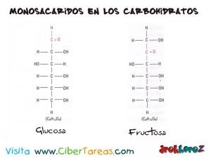 Monosacaridos de los Carbohidratos-Biologia 1