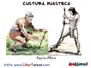 Agricultura-Cultura Huasteca
