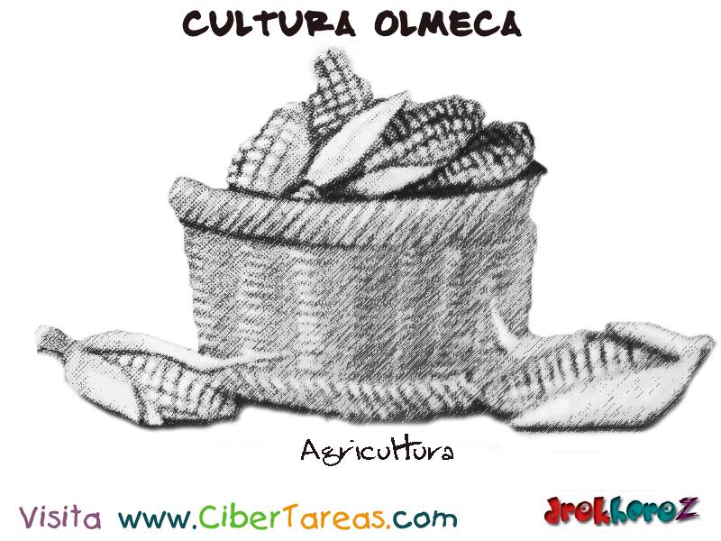 Agricultura Cultura Olmeca Cibertareas