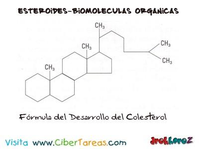 Formula del Desarrollo del Colesterol-Esteroides-Biologia 1