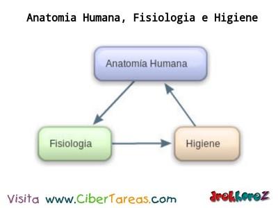 Anatomía Humana, Fisiología e Higiene – Ciencias de la Salud_1 ...