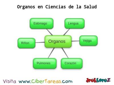 Organos_Ciencias de la Salud