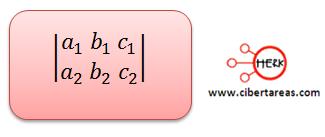 metodo algebraico de determinantes 1