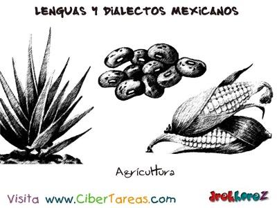 Agricultura-Estado de Yucatan