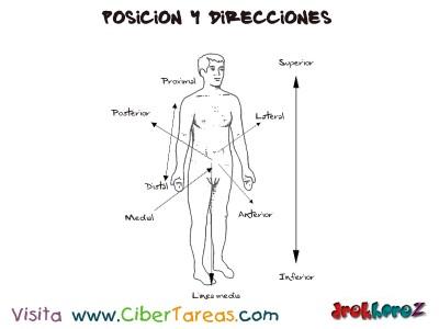 Posiciones y Direcciones_Ciencias de la Salud_1