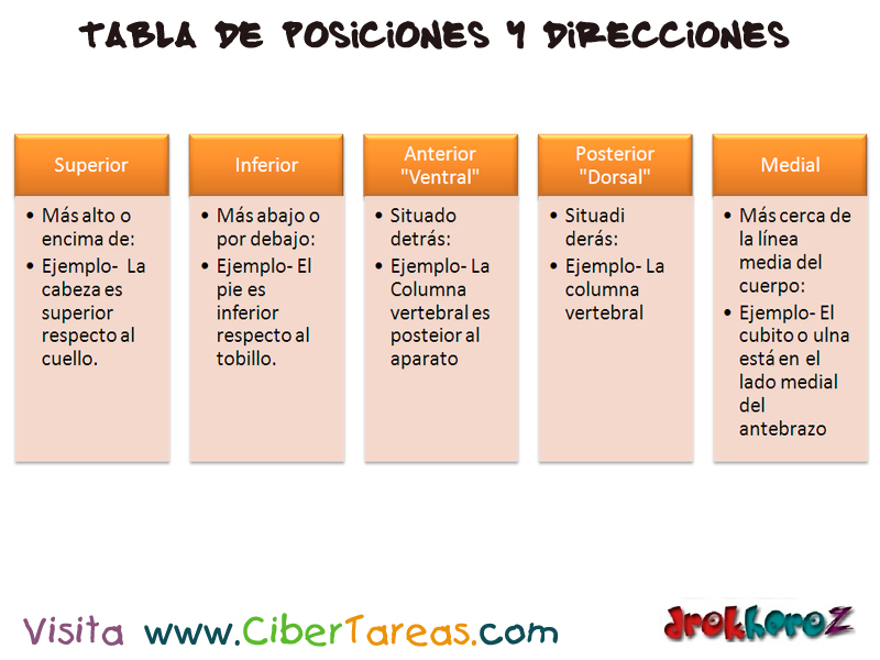 Tabla de Posiciones y Direcciones – Ciencias de la Salud_1   CiberTareas