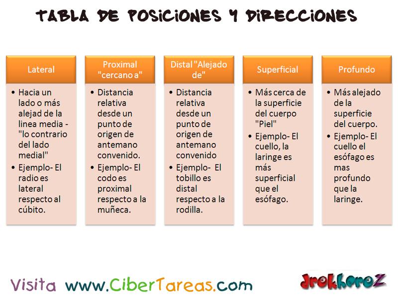 Tabla de Posiciones y Direcciones – Ciencias de la Salud_1 | CiberTareas