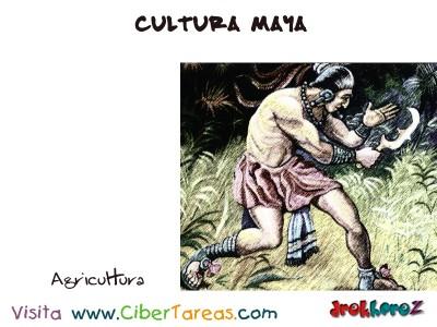 Agricultura - Cultura Maya