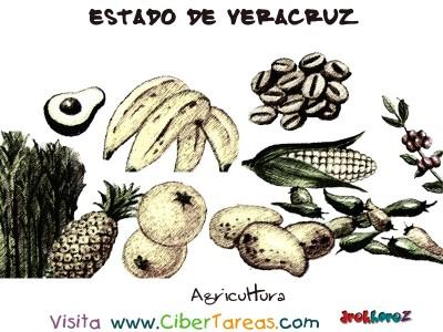 Agricultura - Estado de Veracruz