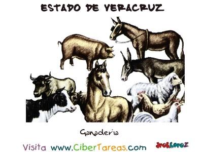 Ganaderia - Estado de Veracruz