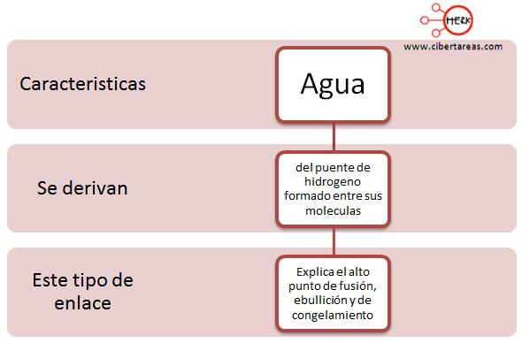 caracteristicas del agua mapa conceptual