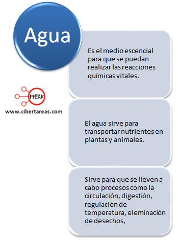 caracteristicas del agua