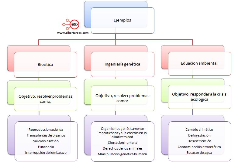 relacion entre la etica y la ciencia ejemplos mapa conceptual etica y valores
