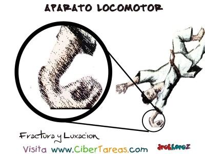 Fractura y Luxacion - Aparato Locomotor