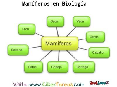 Mamiferos_Mapa Conceptual- Biologia 1