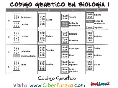 Tabla del Codigo Genetico -Bilogia 1