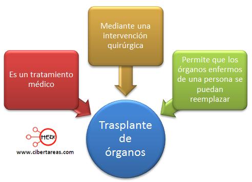 Trasplante de organos mapa conceptual concepto etica y valores 2
