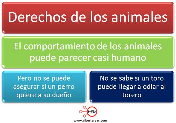 derecho de los animales mapa conceptual etica y valores