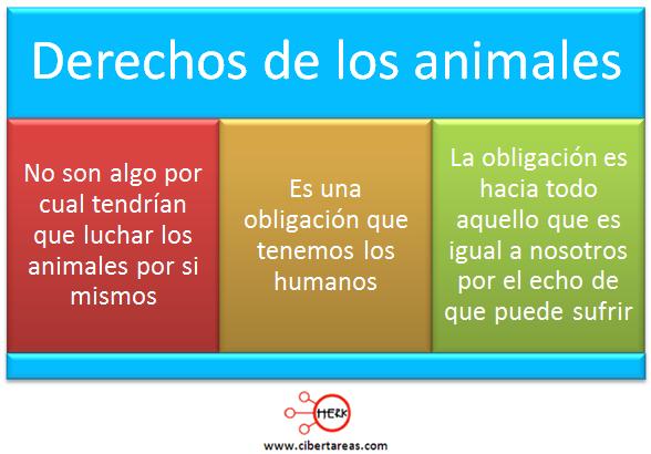 derechos de los animales concepto mapa conceptual etica y valores